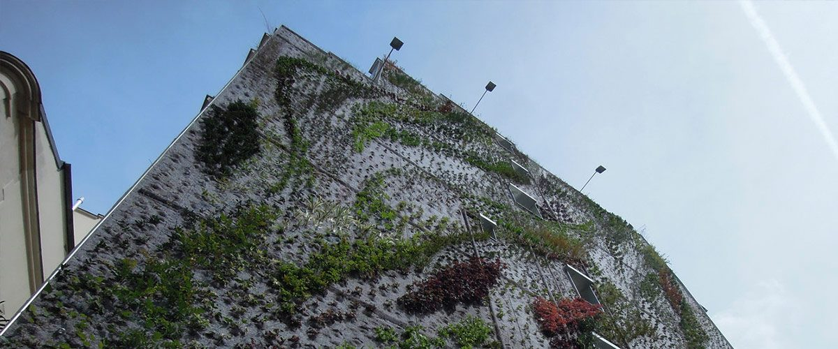 Vertical Garden by Patrick Blanc in Paris - 02