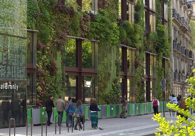 A natural look: green walls and rooftop gardens