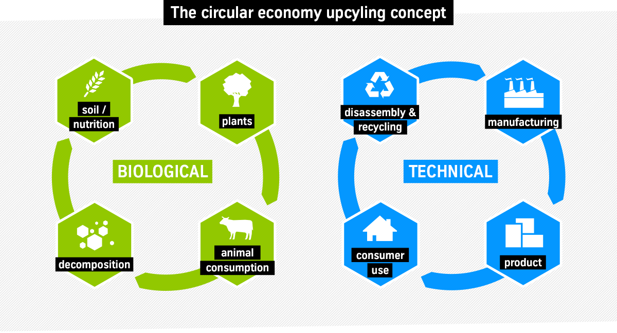 Cradle-to-Cradle circular economy upcycling process