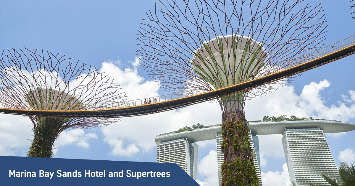 Marina Bay Sands Hotel and Supertrees