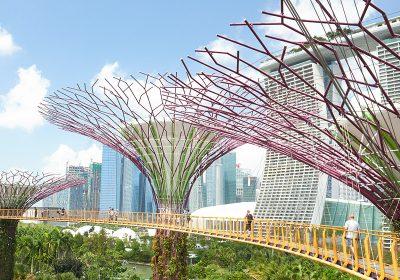 The gems of Singapore