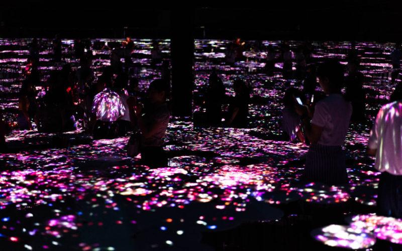 Tokyo Digital Art Museum