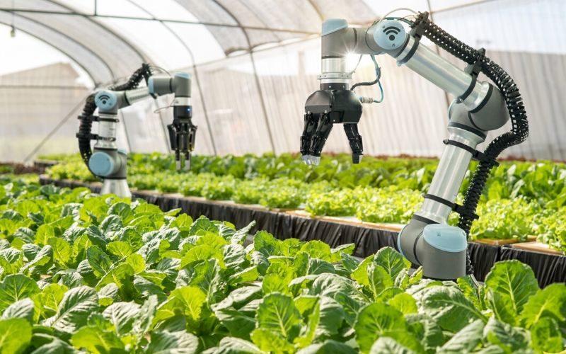 Robots Agruculture